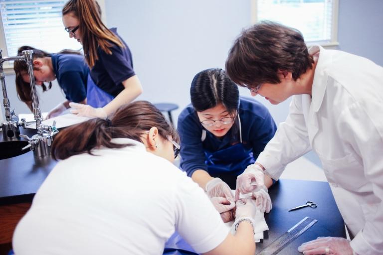 Pig Lab(TA)-4